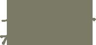 Guldsmed Bent